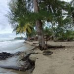 Abrasi di Pesisir Pantai Susoh Provinsi Aceh