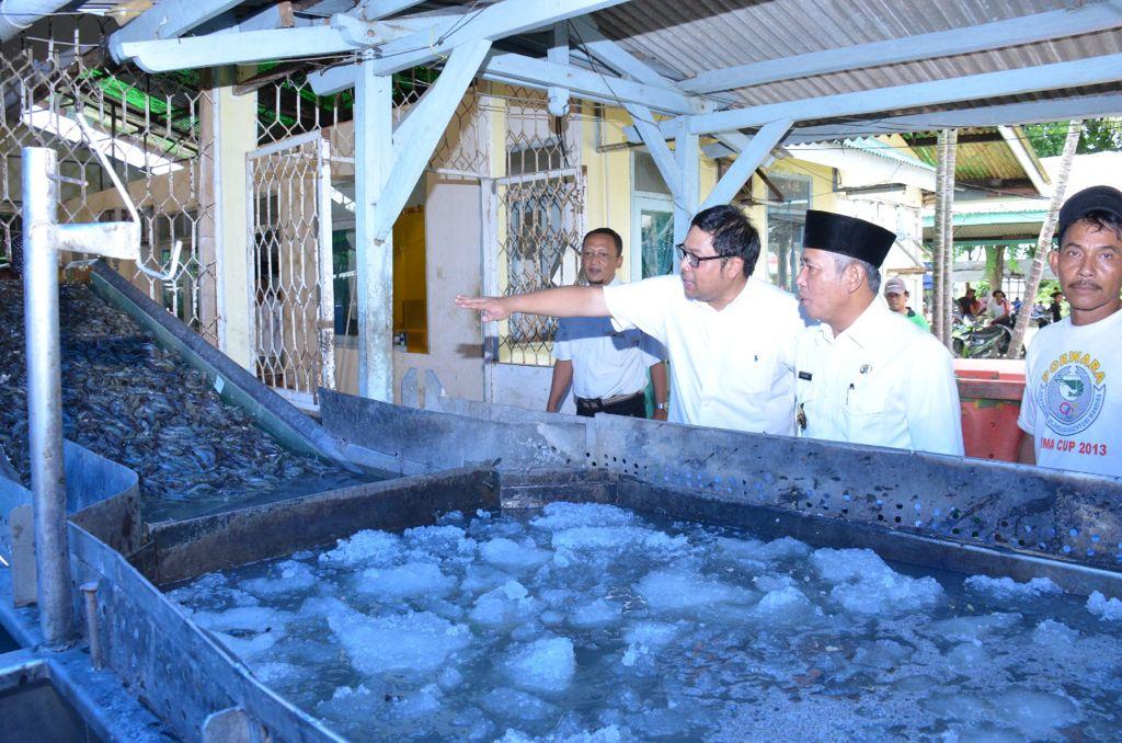 Bupati OKI, H. Iskandar saat meninjau Budi Daya Udang Windu di Wahyuni Mandira OKI (Dokumen Pemkab OKI)